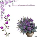 Belle comme les fleurs