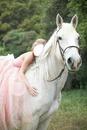 Cheval blanc blonde