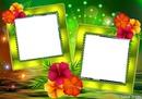 marco verde transparente 2 fotos y flores