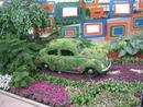 voiture fleur