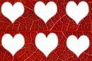 Des coeurs.♥