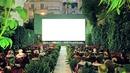 summer cinema1