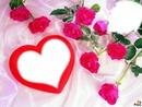 *Quelques roses pour tes 20 ans*