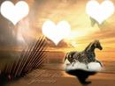 coucher de soleil Cheval