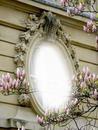 Cadre avec magnolias