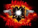mafia albanais