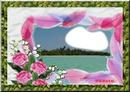 cadre-fleur