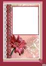 cadre rouge gaetana
