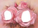 mes deux roses
