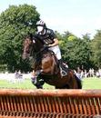 Cavalier qui saute