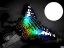 *Papillon de nuit*