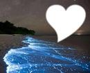 coeur & mer bleue