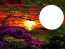 soleil couchant