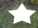 herbe + étoile <3