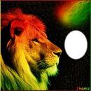 lion rond
