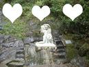 3 fotos veu das noiva poços de caldas