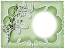 Cadre blanc sur fond vert
