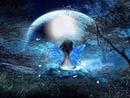 Cc noche de luna