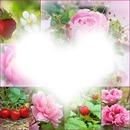 Fleurs et roses