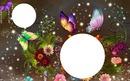Kreis mit Schmetterlinge