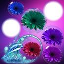 Cadres bulles fleurs