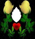 Il regno dei fiori
