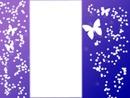 cuadro de magia y mariposas