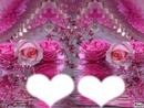 pink fl0wer