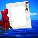 cadre de roses rouge*