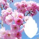 *ça sent bon le printemps*