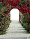tunel de amor