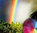 Liebe unterm Regenbogen