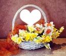floral //$carlette**