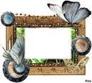 cadre en papillon