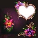 morning glorys an heart
