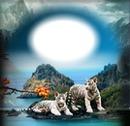 Paysage (tigres)