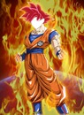 Dragon Ball Super Goku super sayan God