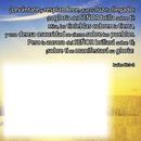 testo biblico