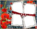 4 photos fleur shanel