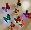 borboletas formosas
