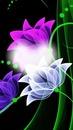 photo sur fleur