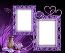 Cadre purple