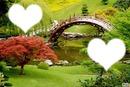 jardin asiatique