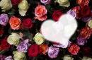 coeur de roses