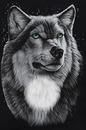 A Farkas 2