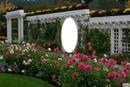 Jardin en fleurs