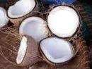 1 photo fond noix de coco