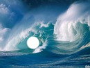 dans la mer