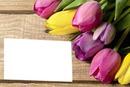 `flores