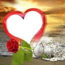coeur sur la plage avec 2 colombes et 1 rose 1 photo